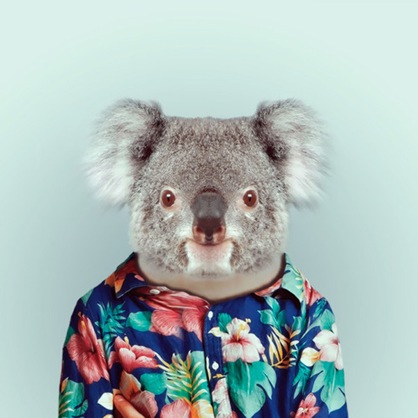 zoo-portraits-by-yago-partal-14