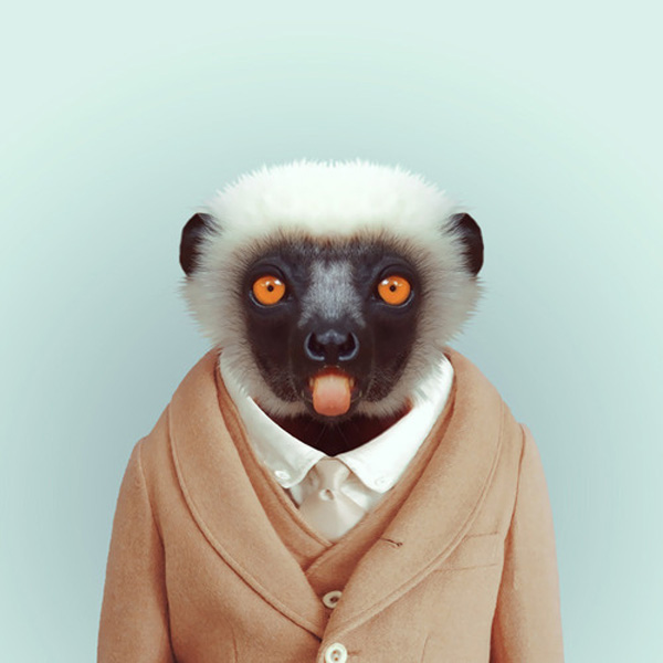 zoo-portraits-by-yago-partal-21