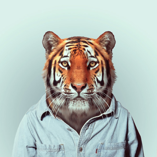 zoo-portraits-by-yago-partal-23